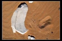 white-desert-06-tzc_2307