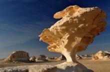 white-desert-09-tzc_2375