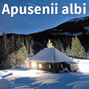 Apusenii Albi – Tura foto 21-23 februarie